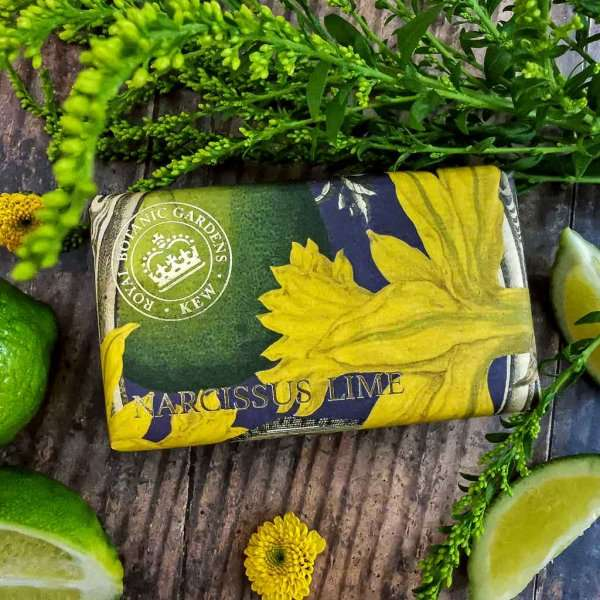KGS0015 Kew Narcissus Lime Soap Bar low res