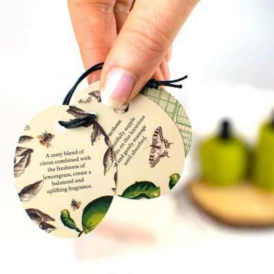 Kew Gardens Lemongrass and Lime Body Oil Label