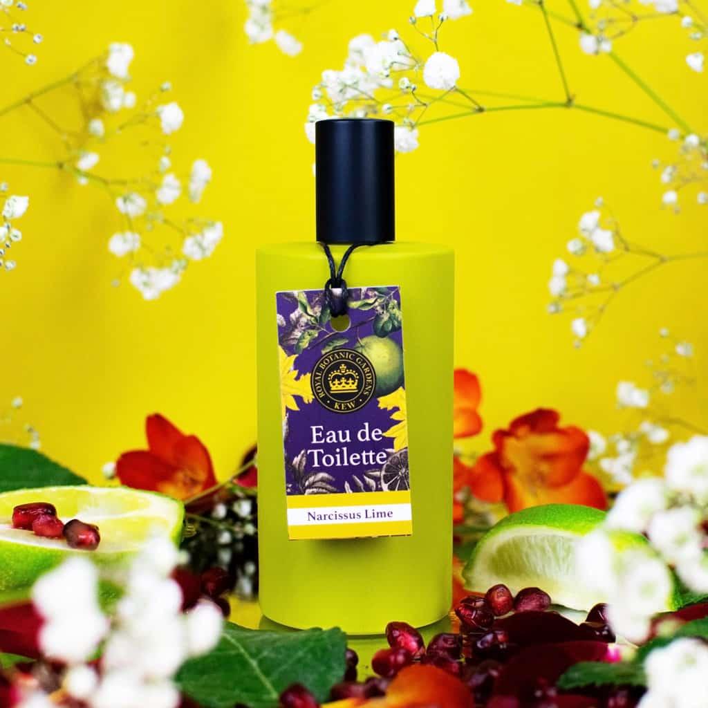 Kew Gardens Narcissus Lime Eau de Toilette