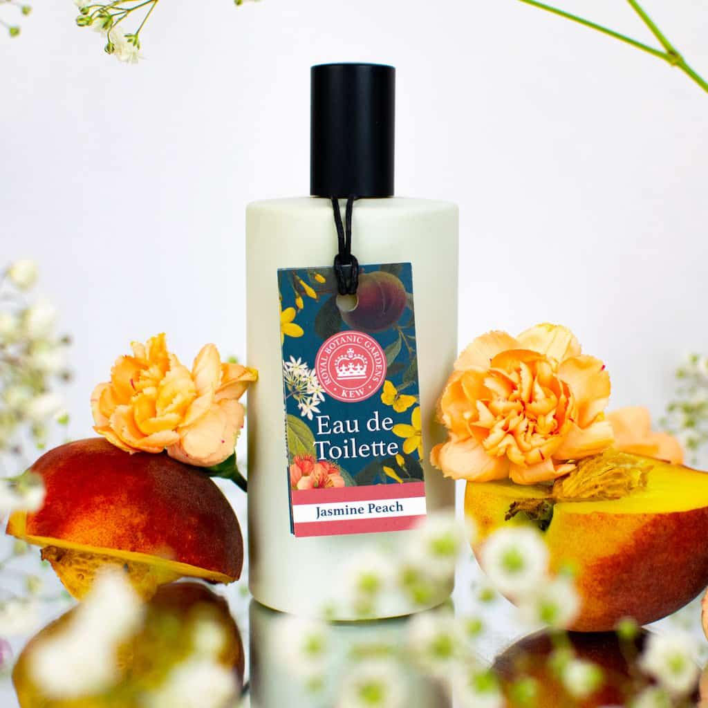Kew Gardens Jasmine Peach Eau de Toilette